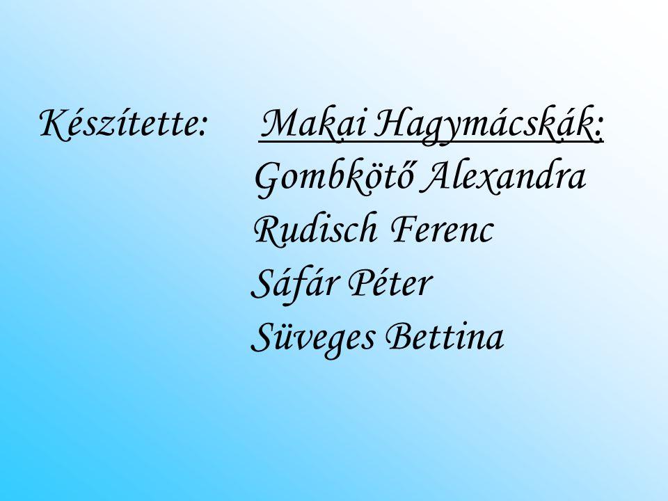 Készítette: Makai Hagymácskák: Gombkötő Alexandra Rudisch Ferenc Sáfár Péter Süveges Bettina