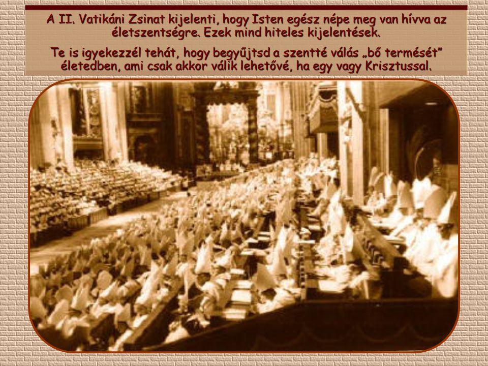 A II. Vatikáni Zsinat kijelenti, hogy Isten egész népe meg van hívva az életszentségre. Ezek mind hiteles kijelentések.