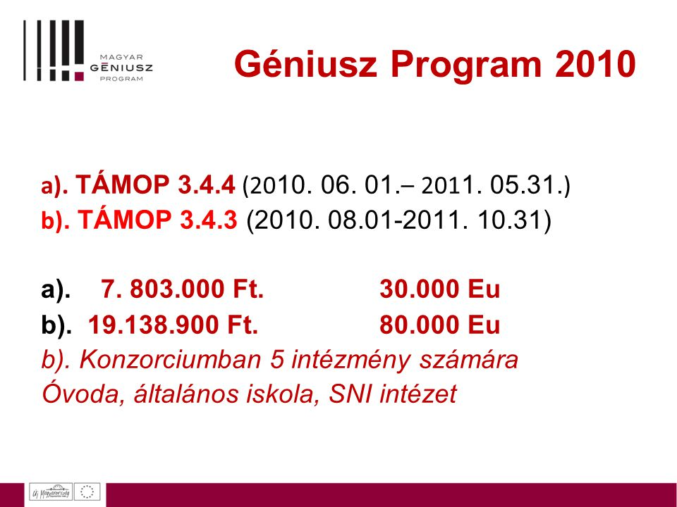 Géniusz Program 2010 a). TÁMOP 3.4.4 (2010. 06. 01.– 2011. 05.31.)