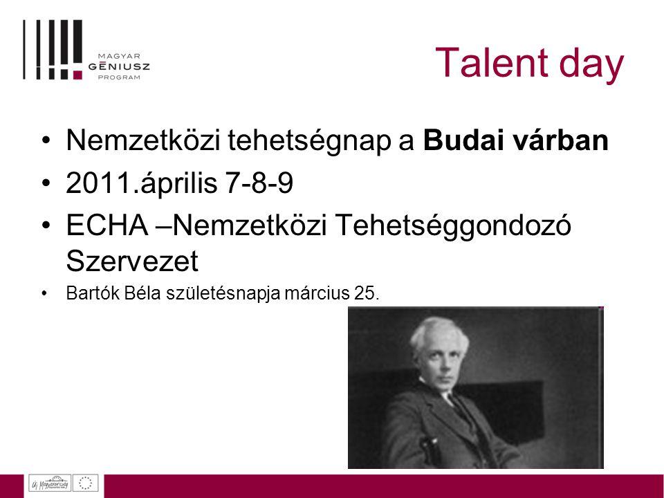 Talent day Nemzetközi tehetségnap a Budai várban 2011.április 7-8-9