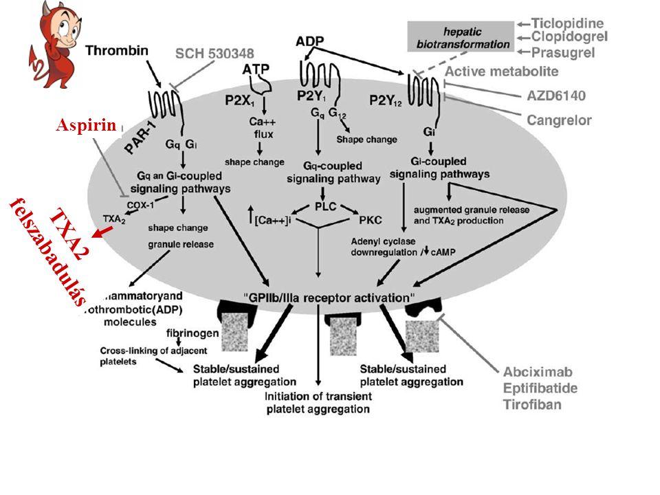 Aspirin felszabadulás TXA2