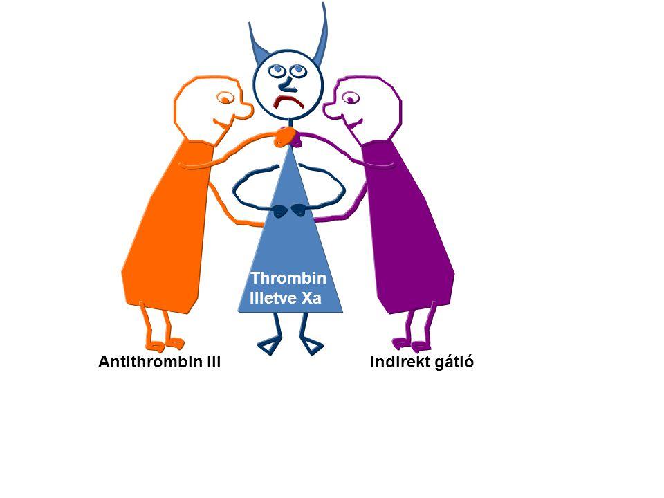 Thrombin Illetve Xa Antithrombin III Indirekt gátló