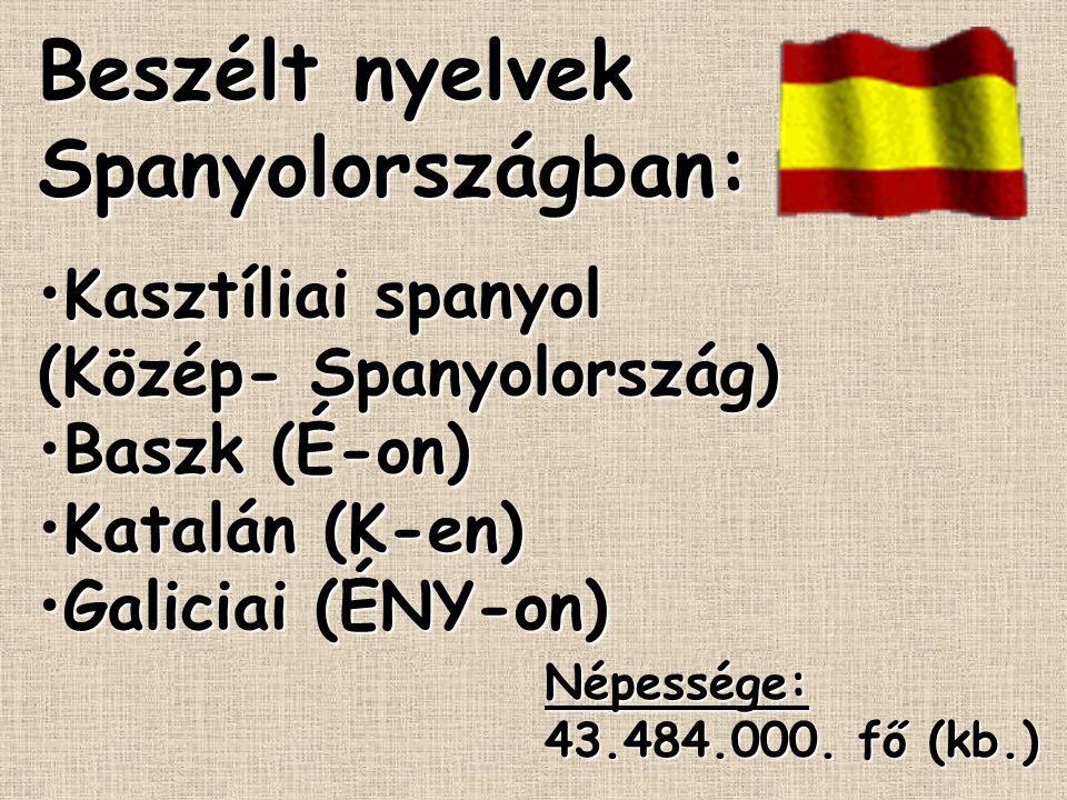 Beszélt nyelvek Spanyolországban:
