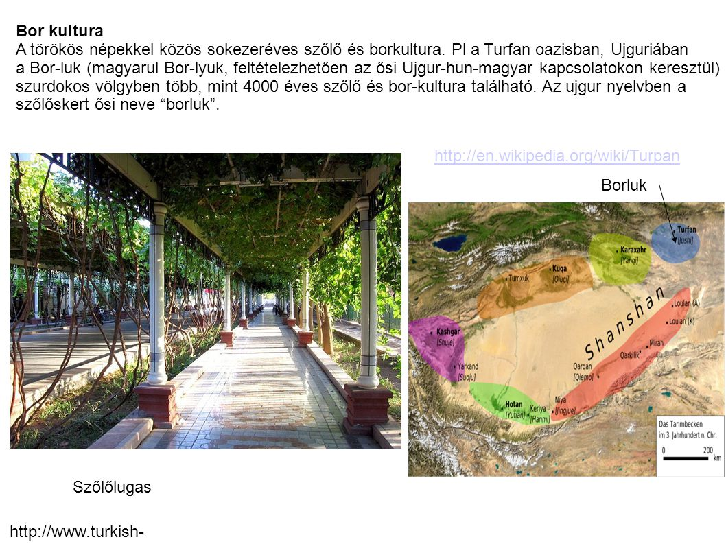 Bor kultura A törökös népekkel közös sokezeréves szőlő és borkultura. Pl a Turfan oazisban, Ujguriában.