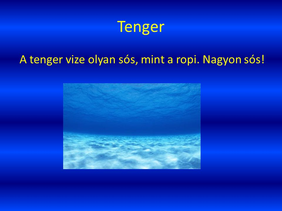 Tenger A tenger vize olyan sós, mint a ropi. Nagyon sós!