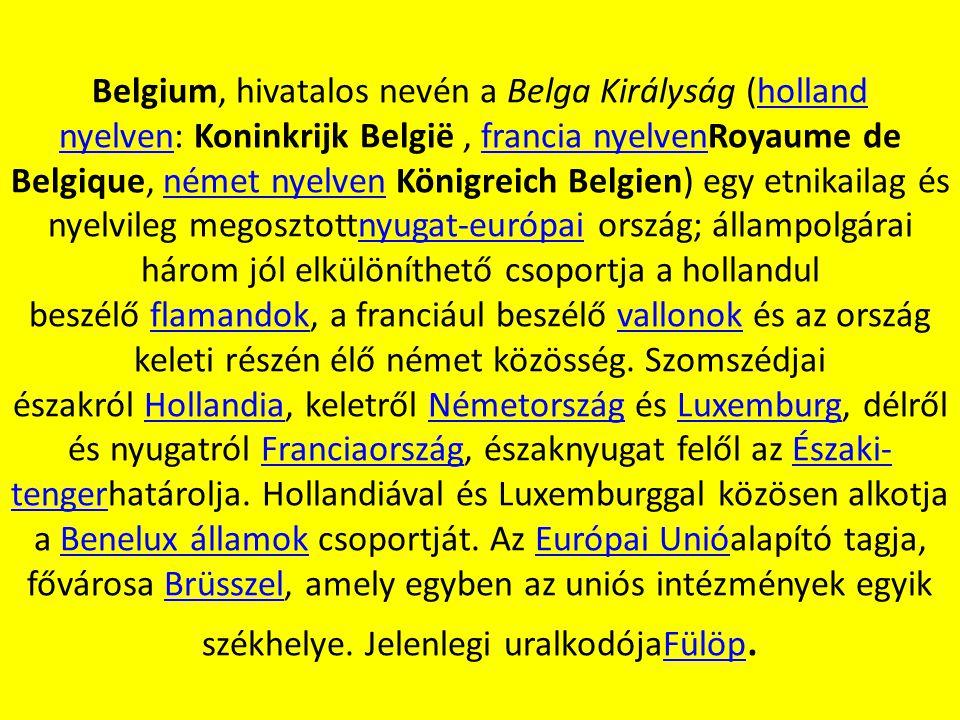 Belgium, hivatalos nevén a Belga Királyság (holland nyelven: Koninkrijk België , francia nyelvenRoyaume de Belgique, német nyelven Königreich Belgien) egy etnikailag és nyelvileg megosztottnyugat-európai ország; állampolgárai három jól elkülöníthető csoportja a hollandul beszélő flamandok, a franciául beszélő vallonok és az ország keleti részén élő német közösség.