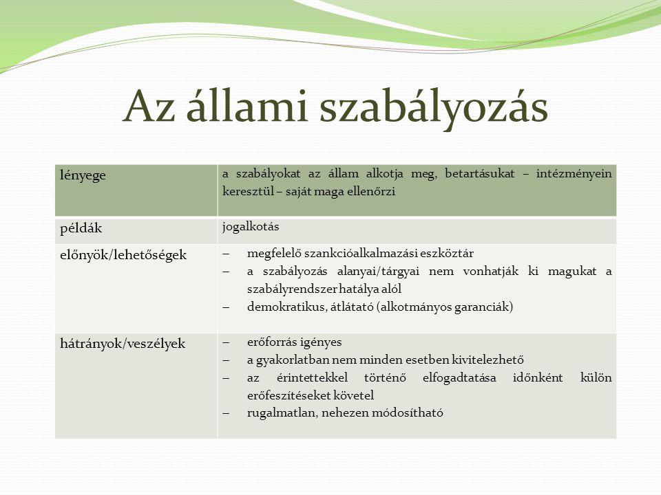 Az állami szabályozás lényege példák előnyök/lehetőségek