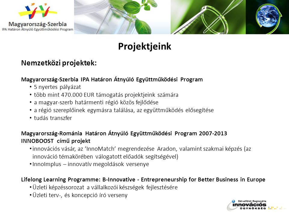 Projektjeink Nemzetközi projektek:
