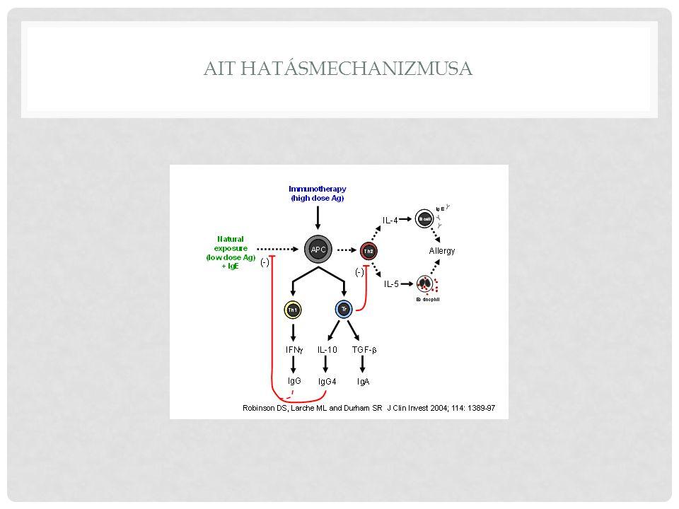 AIT hatásmechanizmusa