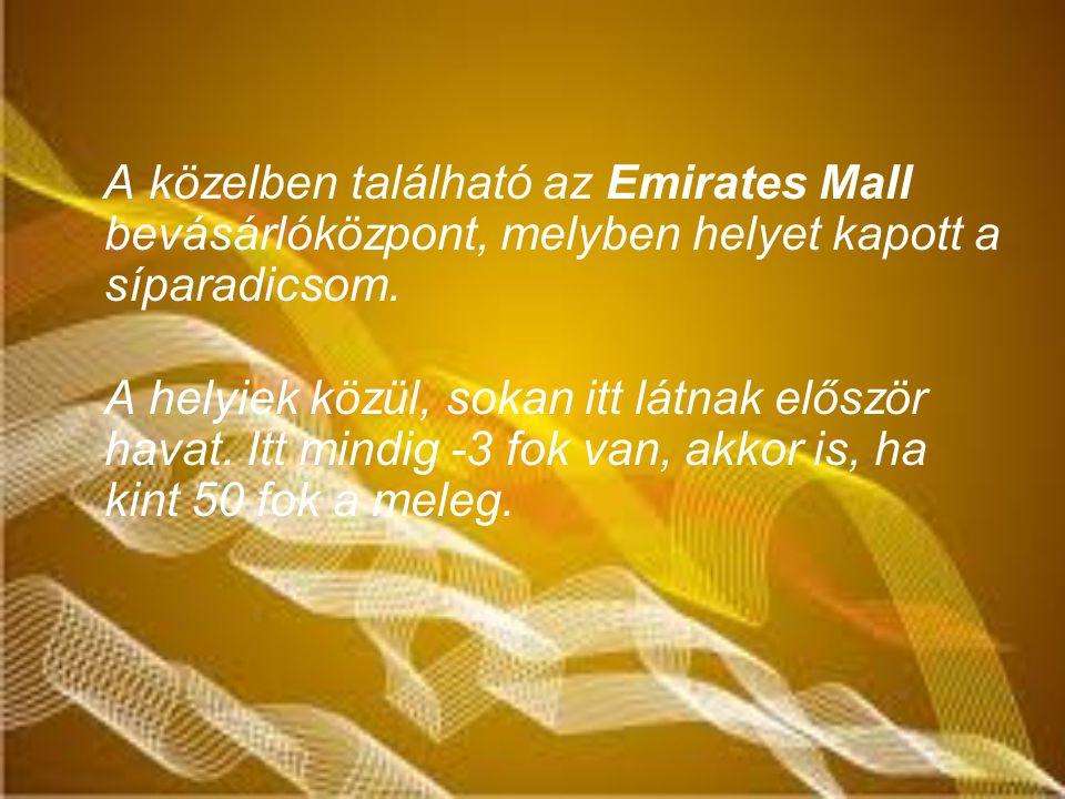 A közelben található az Emirates Mall bevásárlóközpont, melyben helyet kapott a síparadicsom.