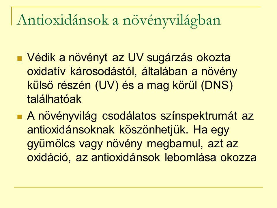 Antioxidánsok a növényvilágban