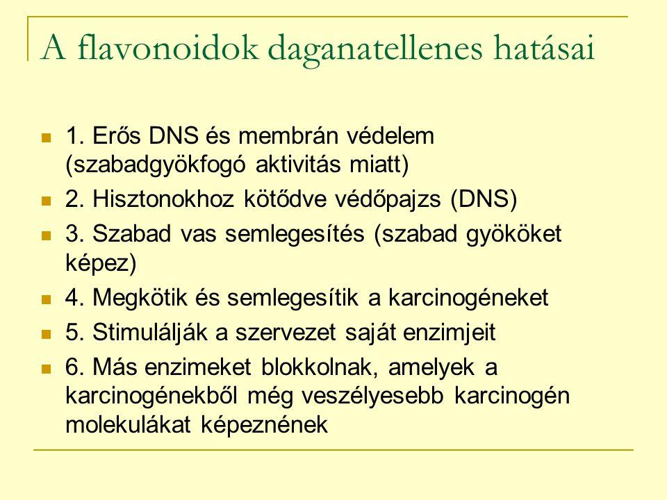 A flavonoidok daganatellenes hatásai