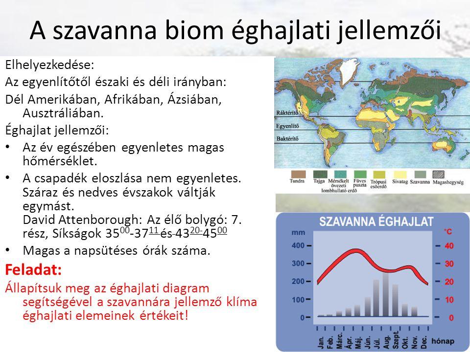 A szavanna biom éghajlati jellemzői