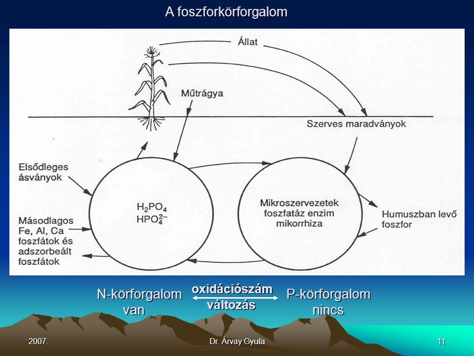 N-körforgalom oxidációszám P-körforgalom van változás nincs