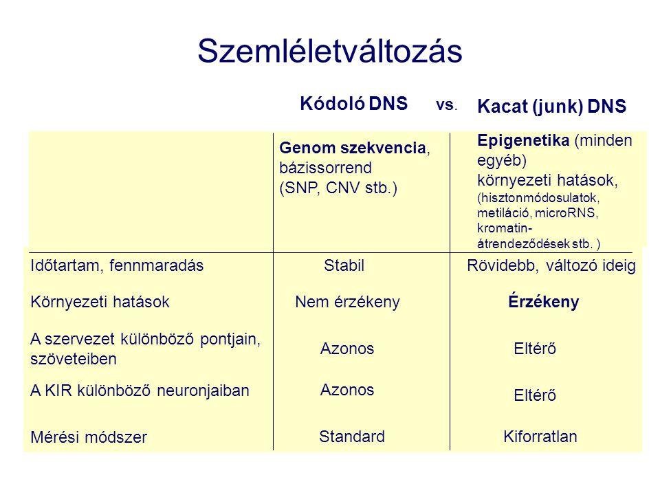 Szemléletváltozás Kódoló DNS Kacat (junk) DNS vs.