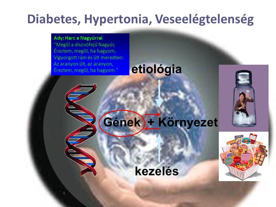 Diabetes, Hypertonia, Veseelégtelenség