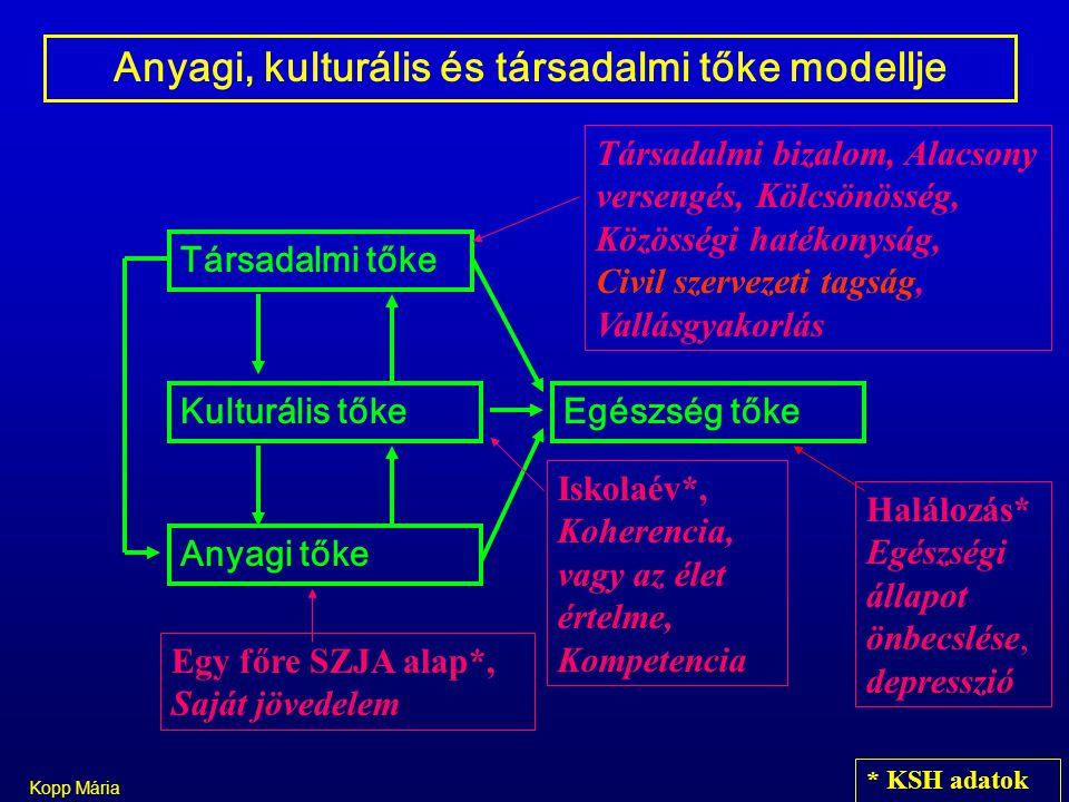 Anyagi, kulturális és társadalmi tőke modellje