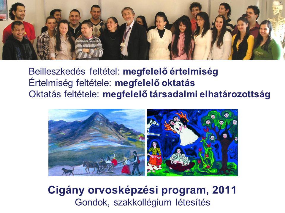 Cigány orvosképzési program, 2011 Gondok, szakkollégium létesítés