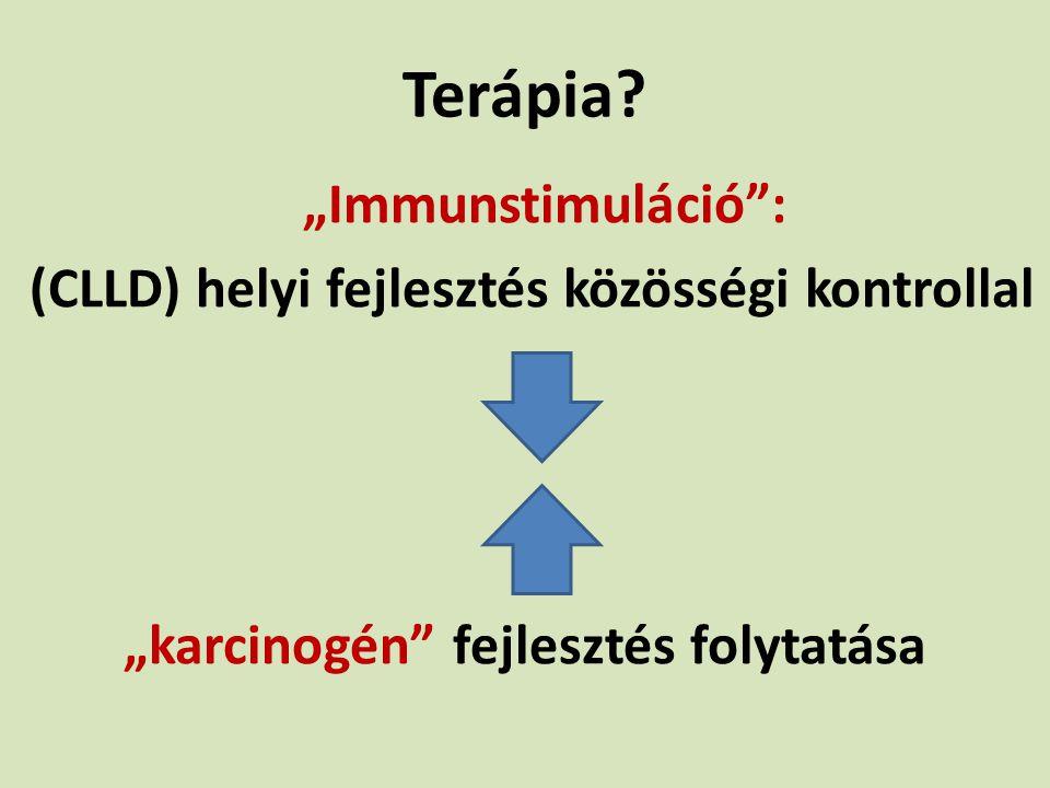Terápia (CLLD) helyi fejlesztés közösségi kontrollal