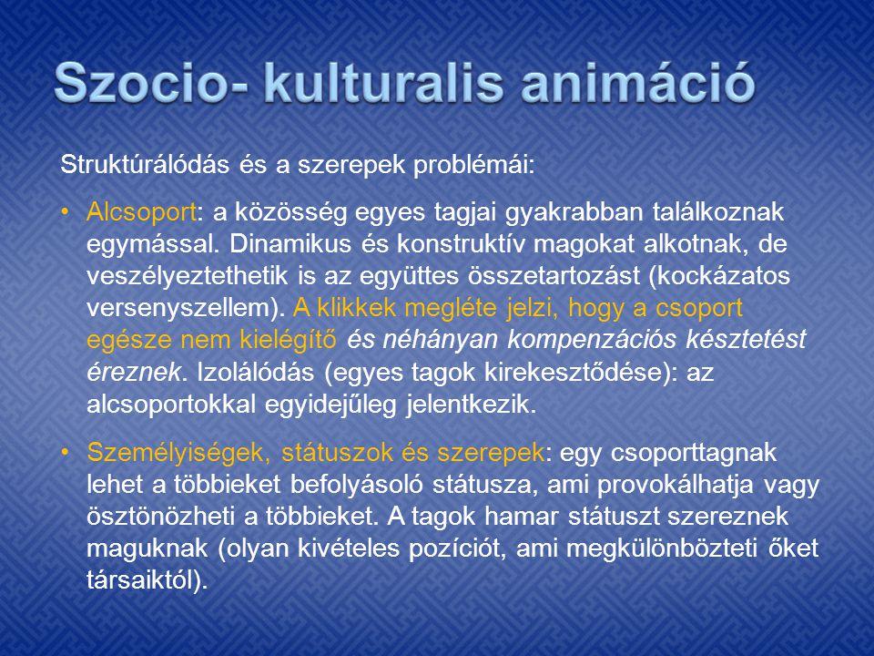 Szocio- kulturalis animáció