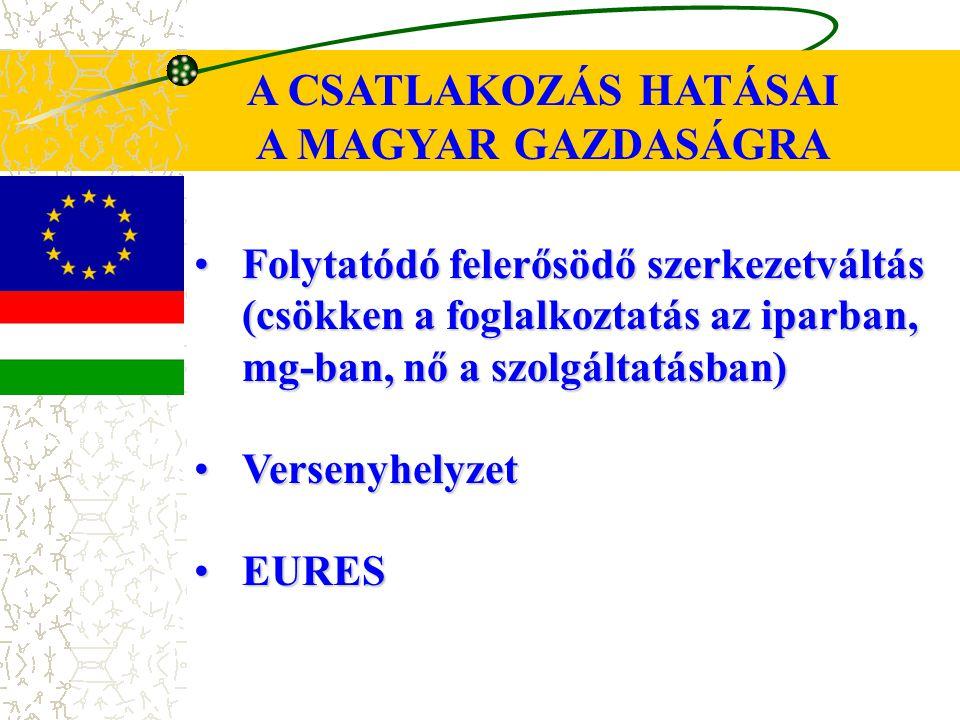 A CSATLAKOZÁS HATÁSAI A MAGYAR GAZDASÁGRA