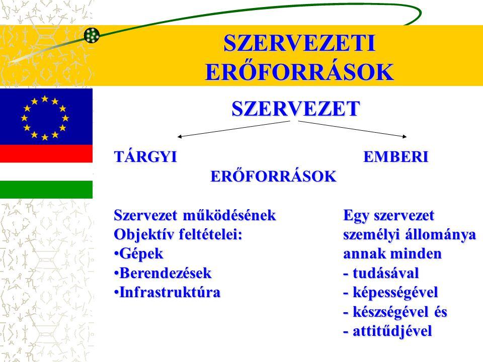 SZERVEZETI ERŐFORRÁSOK