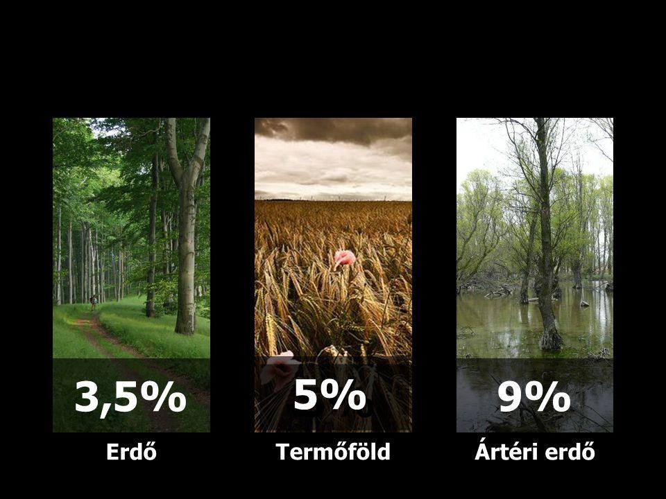 3,5% 5% 9% Erdő Termőföld Ártéri erdő 16