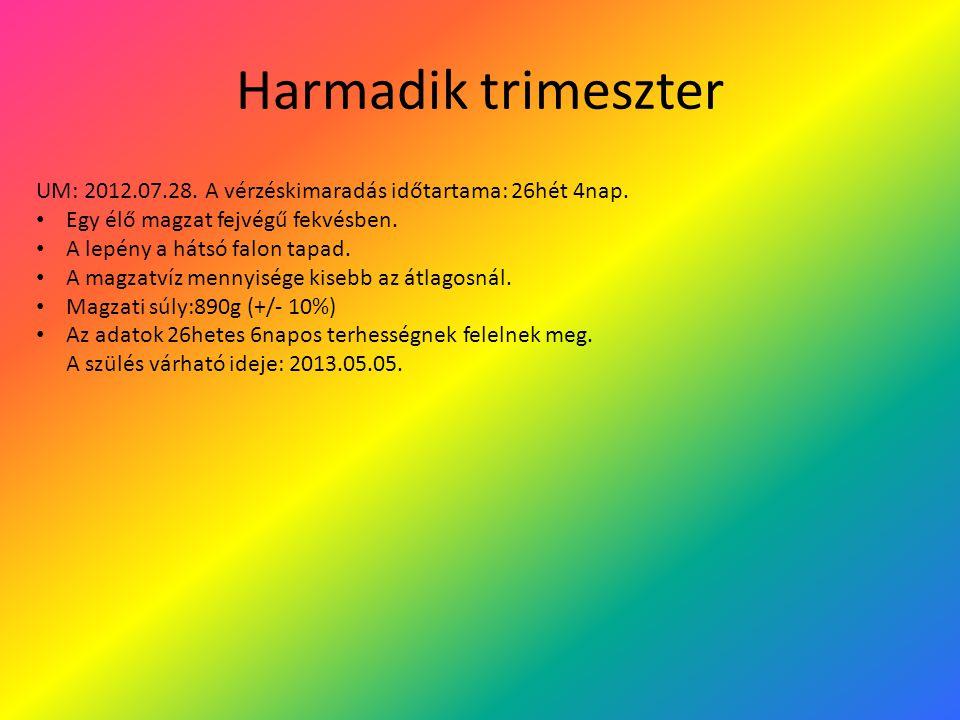 Harmadik trimeszter UM: 2012.07.28. A vérzéskimaradás időtartama: 26hét 4nap. Egy élő magzat fejvégű fekvésben.