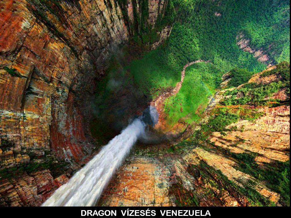 DRAGON VÍZESÉS VENEZUELA