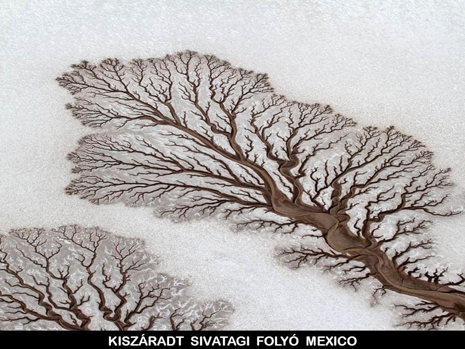 KISZÁRADT SIVATAGI FOLYÓ MEXICO