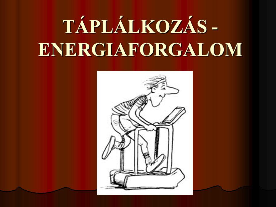 TÁPLÁLKOZÁS - ENERGIAFORGALOM