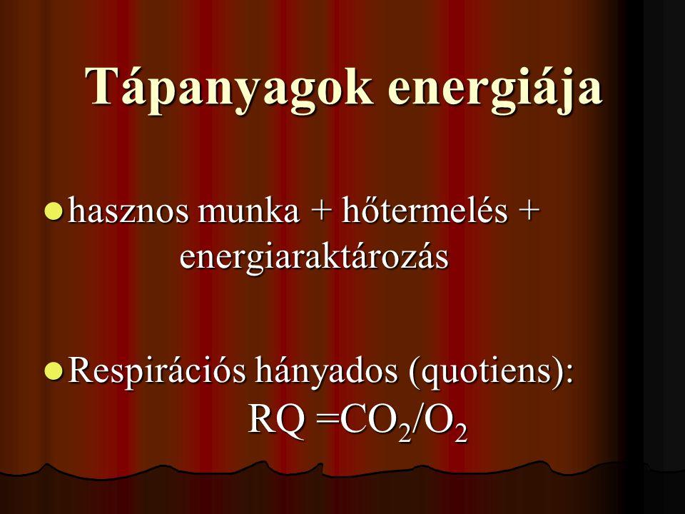Tápanyagok energiája hasznos munka + hőtermelés + energiaraktározás