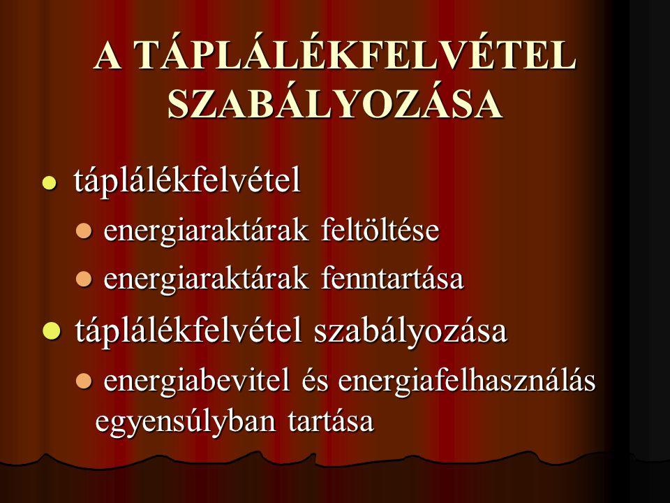 A TÁPLÁLÉKFELVÉTEL SZABÁLYOZÁSA