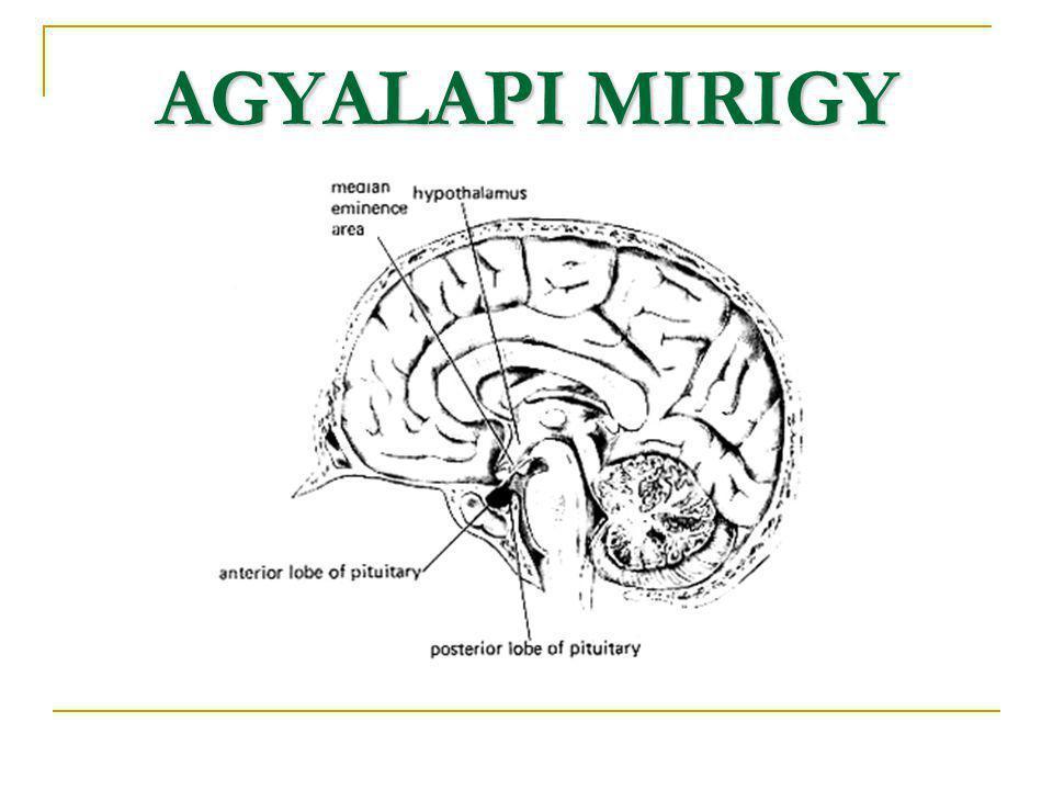 AGYALAPI MIRIGY
