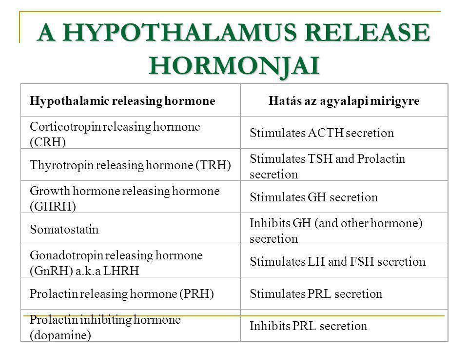 A HYPOTHALAMUS RELEASE HORMONJAI