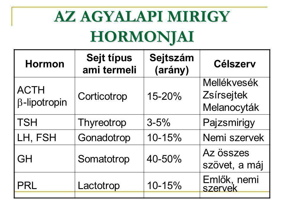 AZ AGYALAPI MIRIGY HORMONJAI