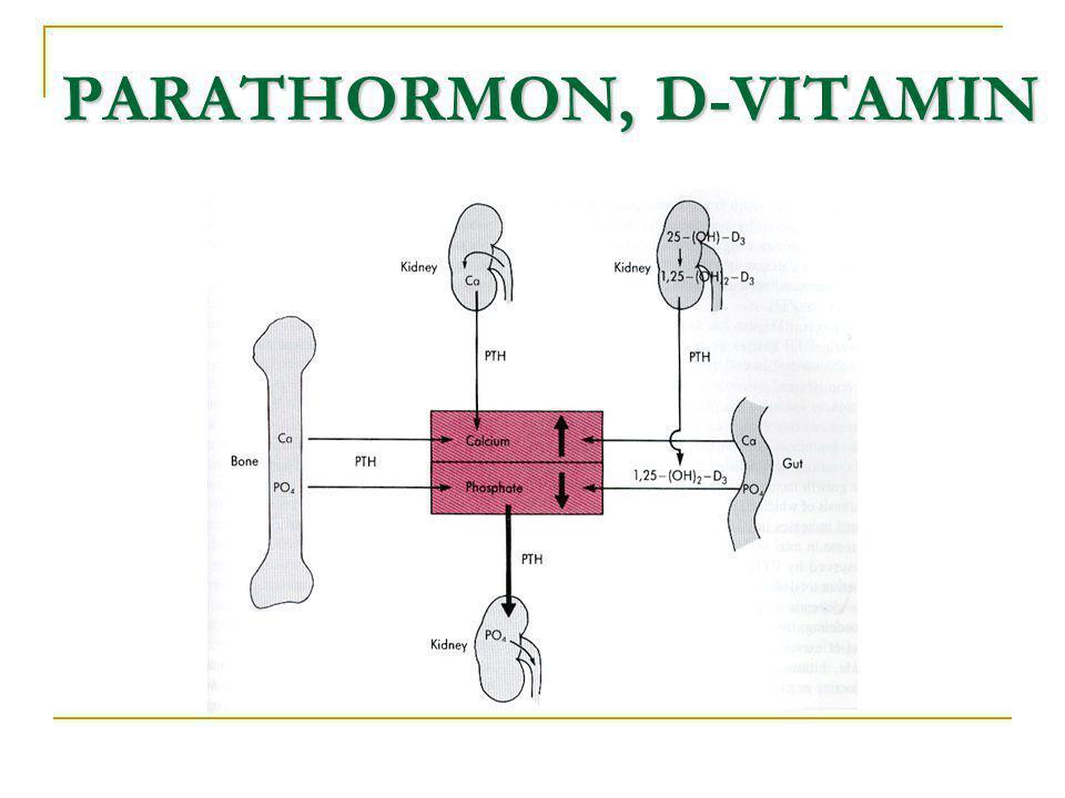 PARATHORMON, D-VITAMIN