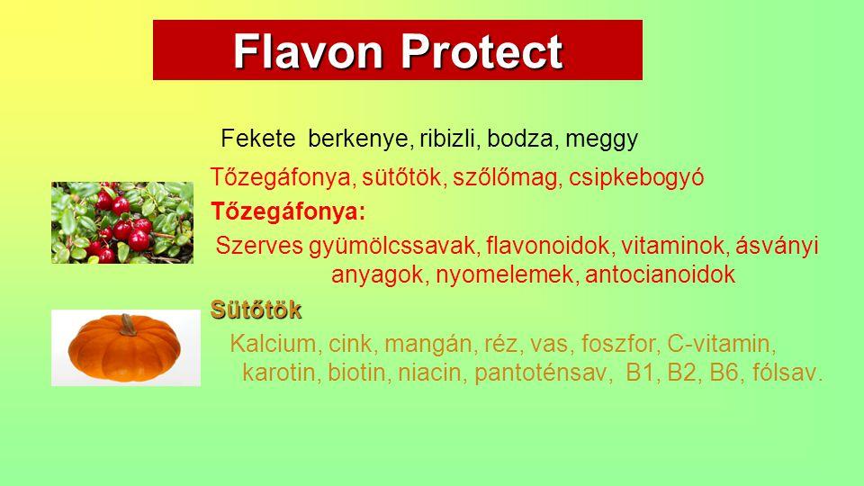 Flavon Protect Fekete berkenye, ribizli, bodza, meggy