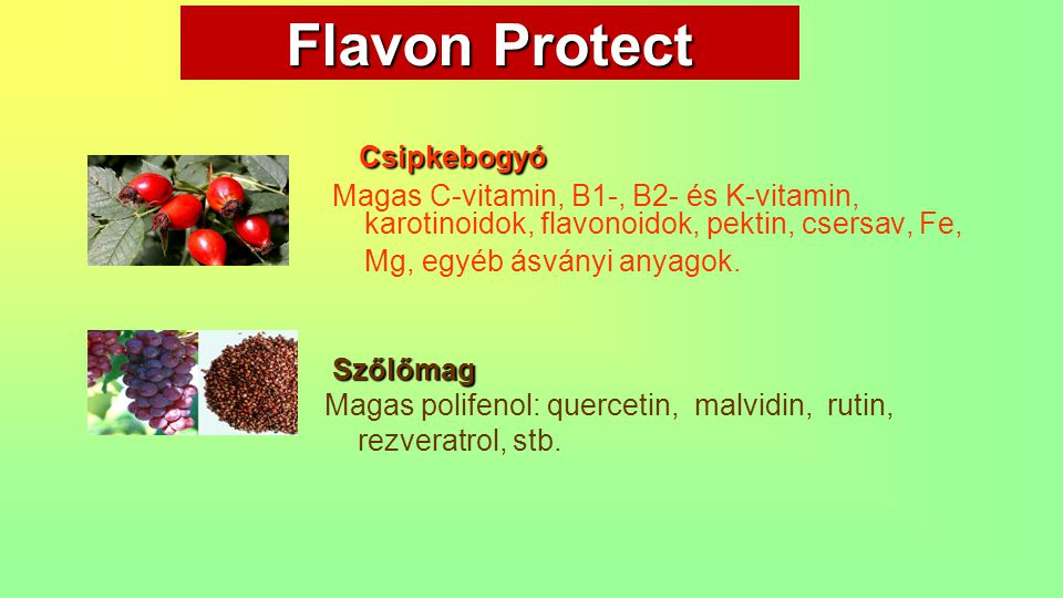 Flavon Protect Csipkebogyó