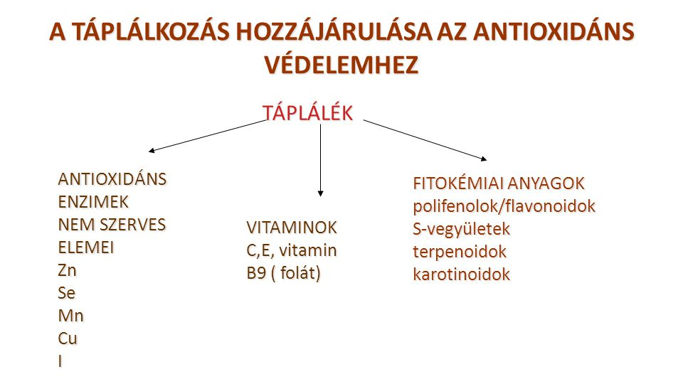 A TÁPLÁLKOZÁS HOZZÁJÁRULÁSA AZ ANTIOXIDÁNS VÉDELEMHEZ