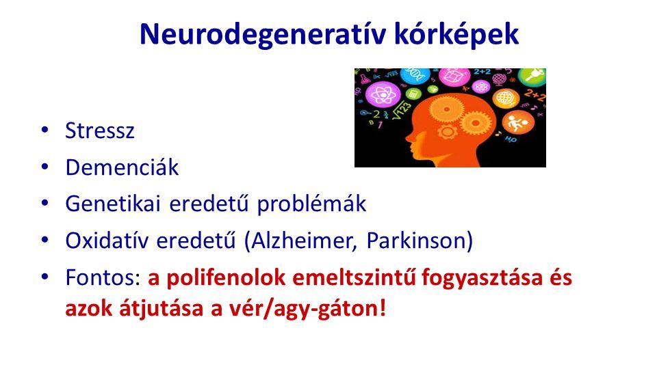 Neurodegeneratív kórképek