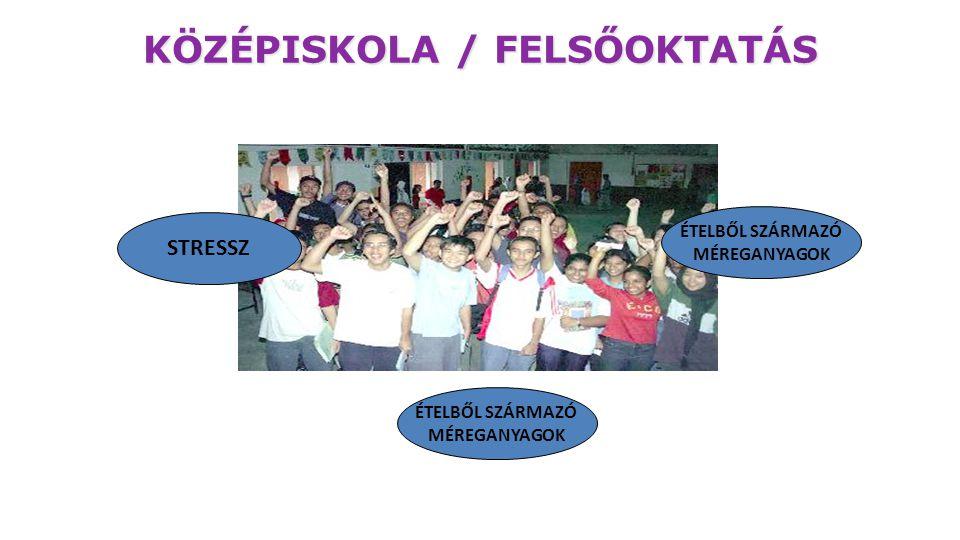KÖZÉPISKOLA / FELSŐOKTATÁS