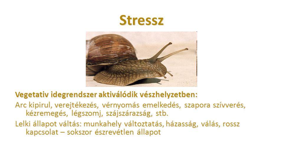 Stressz Vegetativ idegrendszer aktiválódik vészhelyzetben: