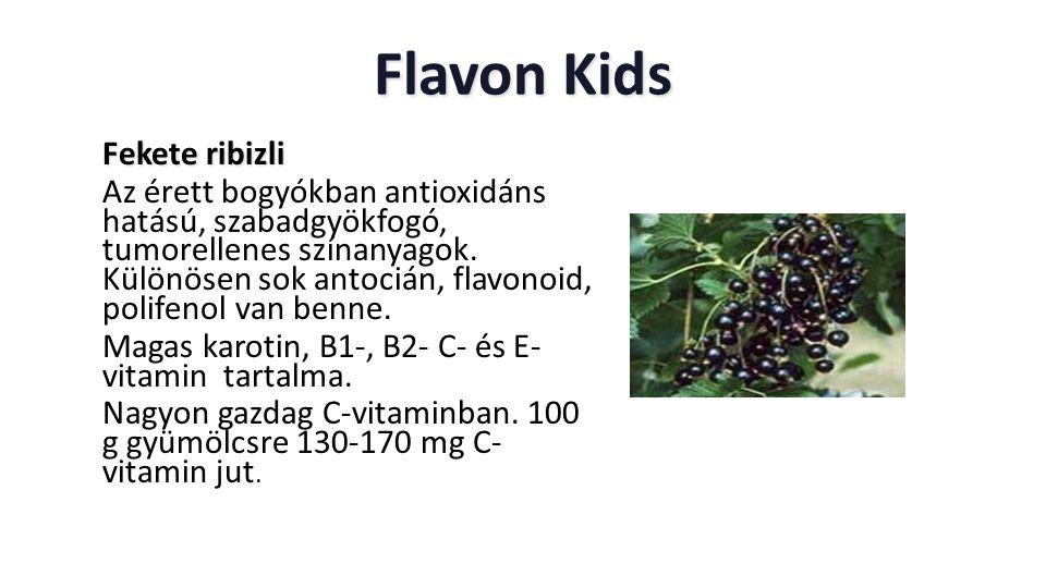 Flavon Kids Fekete ribizli