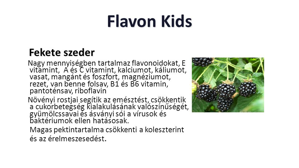 Flavon Kids Fekete szeder
