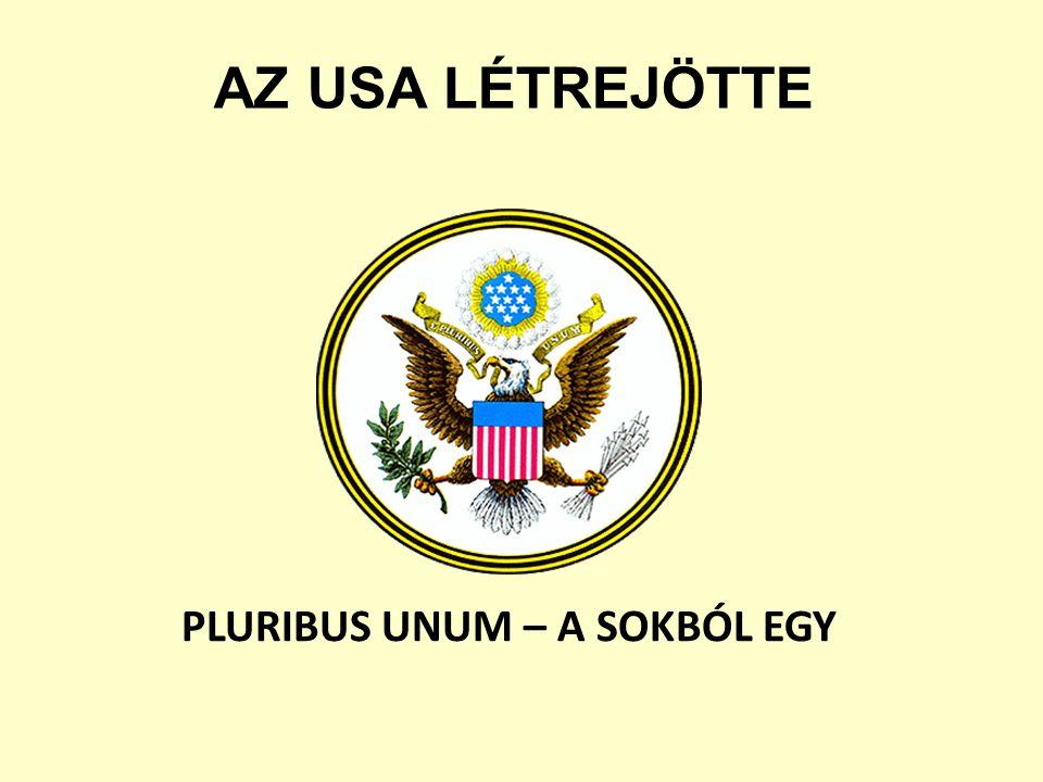 PLURIBUS UNUM – A SOKBÓL EGY