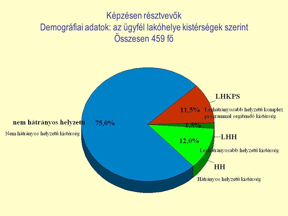 Képzésen résztvevők Demográfiai adatok: az ügyfél lakóhelye kistérségek szerint Összesen 459 fő