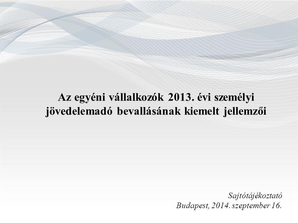Az egyéni vállalkozók 2013. évi személyi
