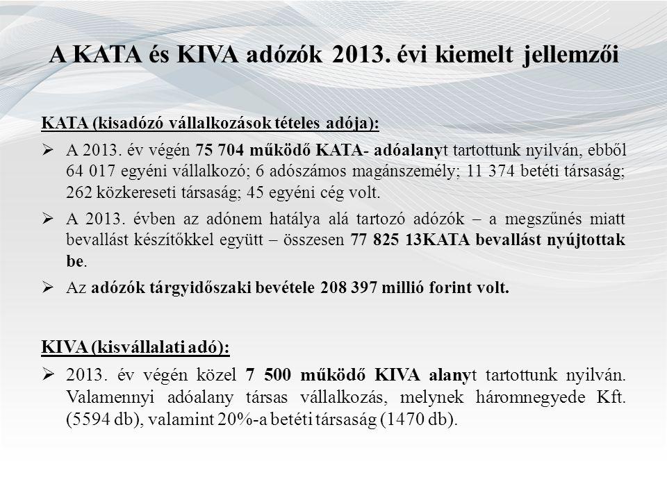 A KATA és KIVA adózók 2013. évi kiemelt jellemzői