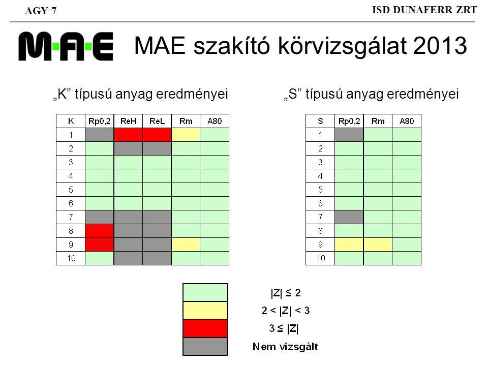 MAE szakító körvizsgálat 2013